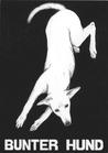 """Ansichtskarte """"Bunter Hund"""""""
