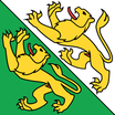 Thurgau  Fahne mit eingesetzem Wappen