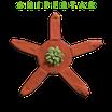 Sniffstar