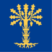 Blekinge Län Flag