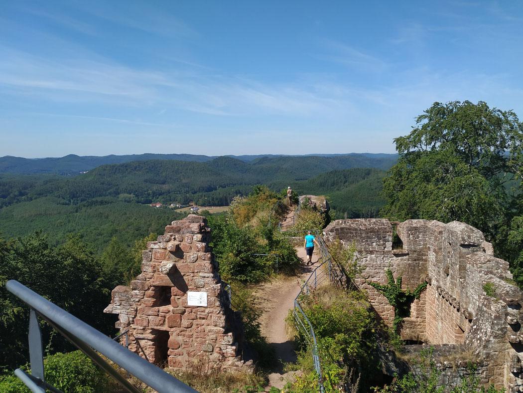 sur les hauteurs du Falkenstein : ma rando préférée, celle au départ de l'étang du HANAU qui passe par le WALDECK, le beau rocher du Erbsenfelsen puis par le falkenstein