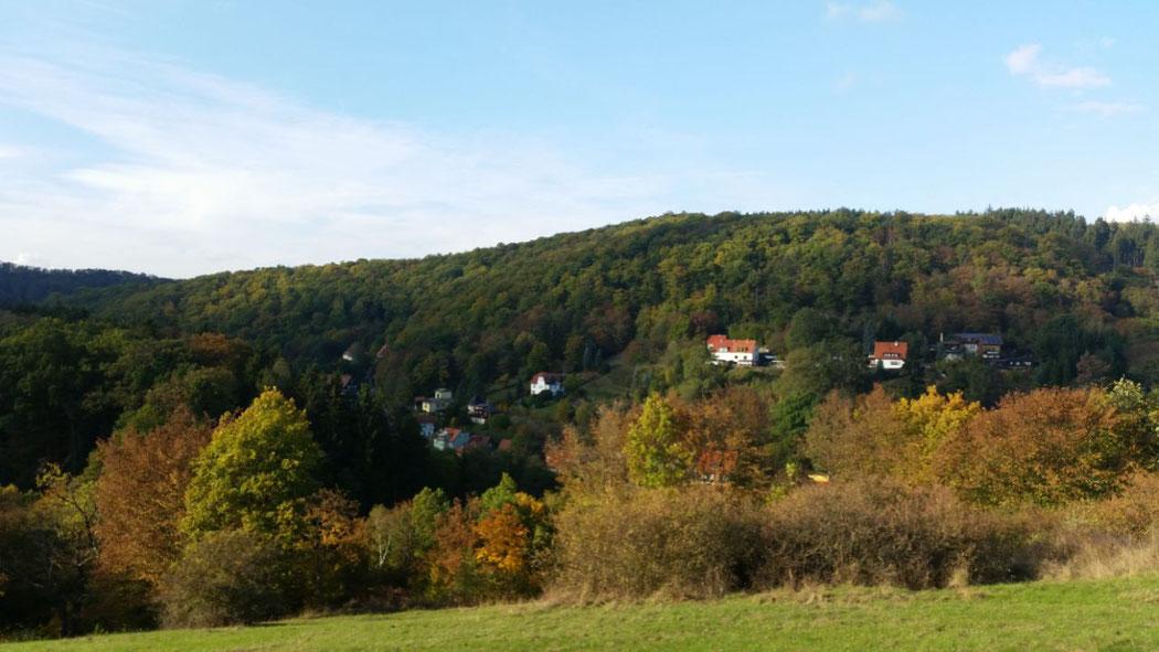 Blick auf Altenbrak