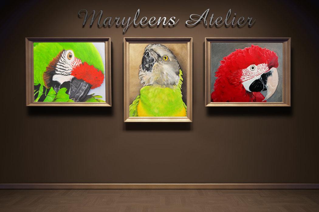 huisdieren portret schilderij door Maryleen van Vliet, papegaaien in een lijst aan de muur.