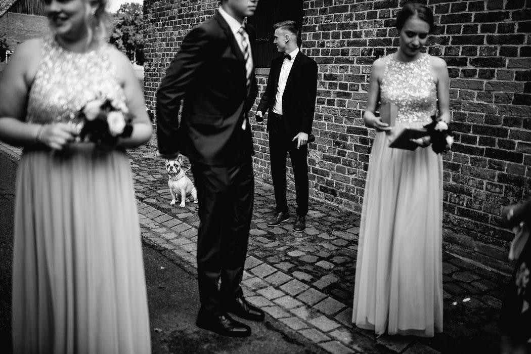 Bademühlen, Heide, Brautpaar, Pose, Hochzeit, Reportage, Real, Wedding, Hamburg, Fischbeck, Zeven, Stade, Vanessa Teichmann, Samuelsen, fotografin, auszug, warten, dog, freunde,