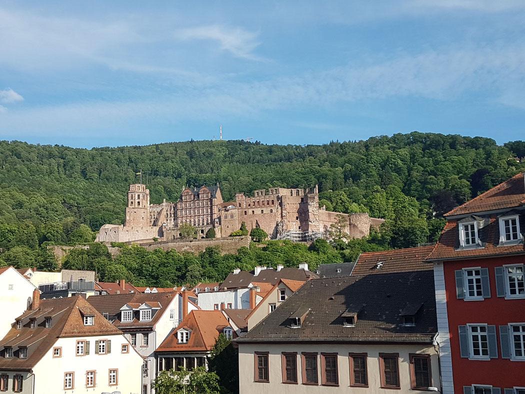 Fanclubausflug nach Heidelberg in 2019 (siehe auch Galerie-Fanclubfotos)