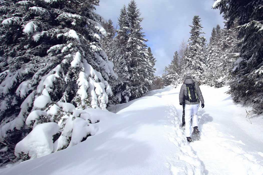 Camuraquette 2018 - Station de ski de Camurac