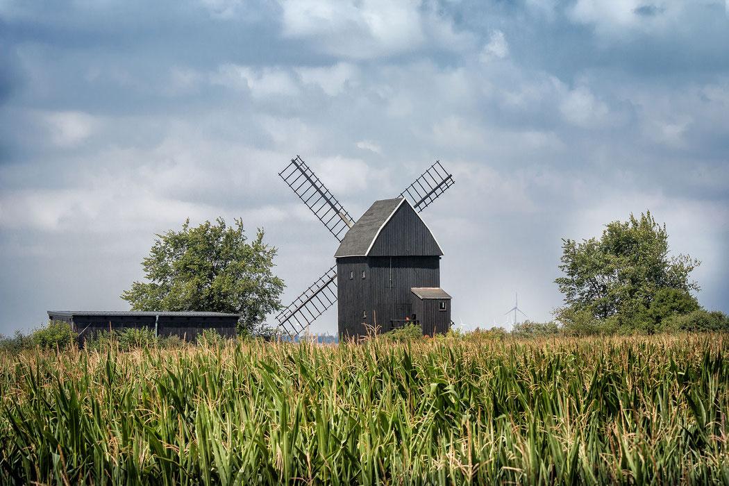 Bockwindmühle in Gölsdorf im Landkreis Teltow Fläming © Jutta M. Jenning/mjpics.de