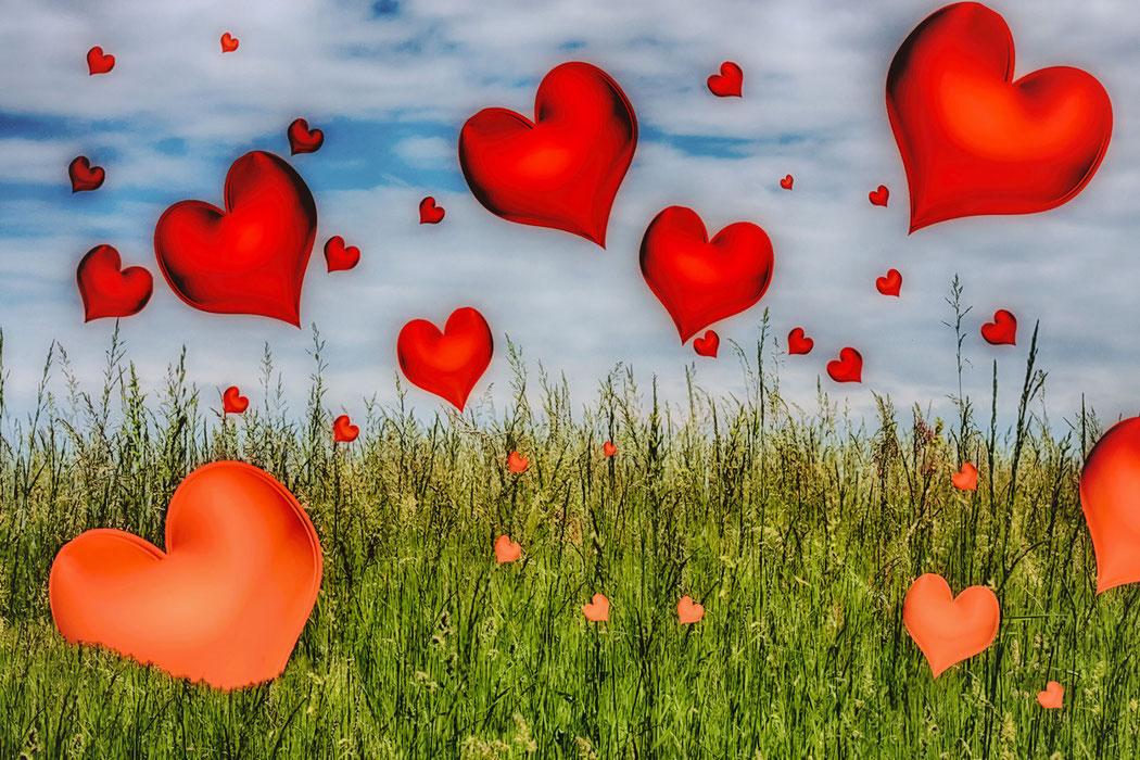 Fliegende Herzen auf der Wiese - Composing © Jutta M. Jenning