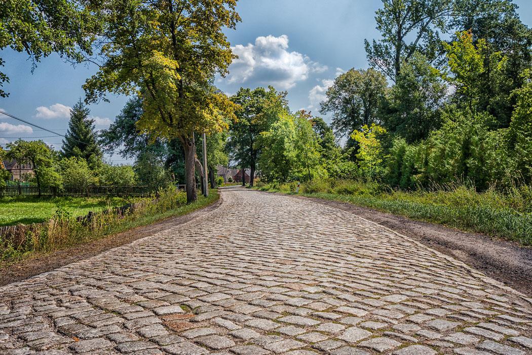 Dorfstrasse mit Bäumen und Kopfsteinpflaster in der ländlichen Idylle Polens