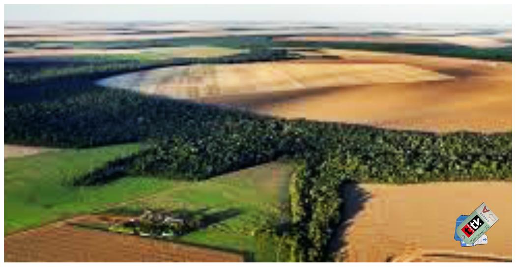 Mato Grosso, Brasil