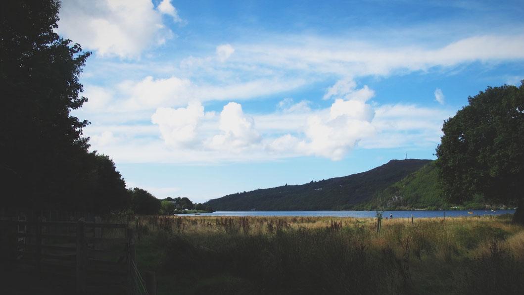 bigousteppes snowdonia paysage mouton foret lac