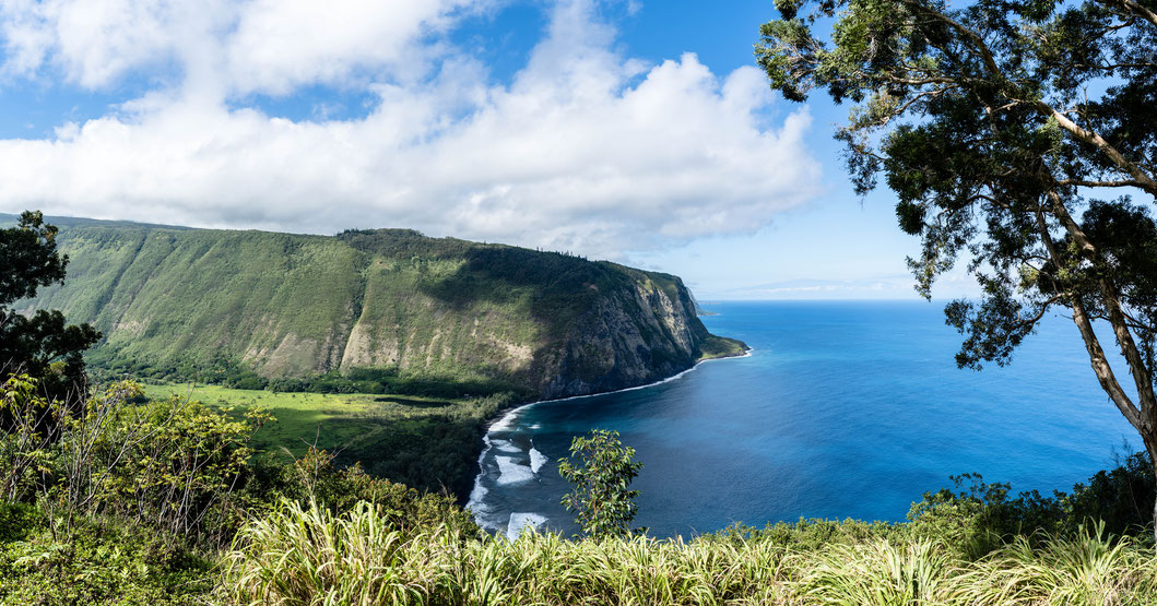 Waipiʻo Valley Lookout, Hawai'i Island, Hawai'i