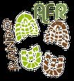 """AFR Loisirs activité  """"Rando"""" 31290 Gardouch"""