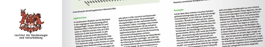 Publikationen - Archiv  | Institut für Tierökologie und Naturbildung