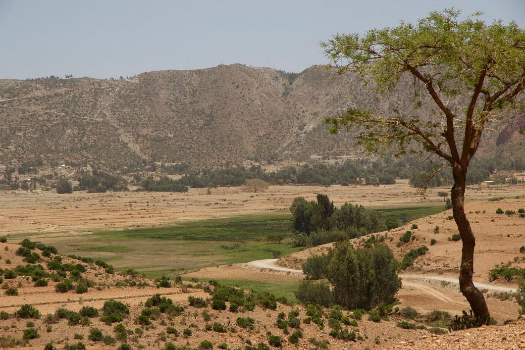 Das Tal von Abraha Atsbeha in Tigray, Nord-Äthiopien