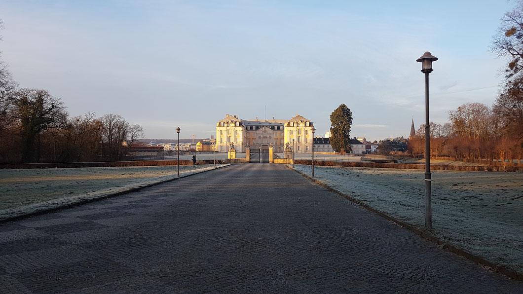Schloss Augustusburg, Brühl (19.01.2019)