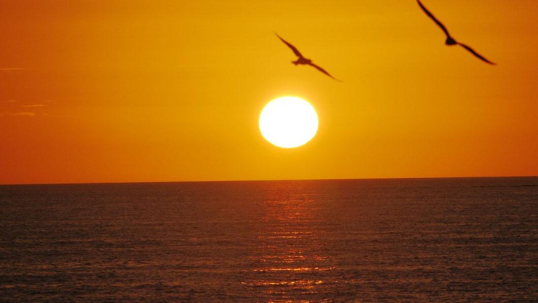 Sonnenuntergang in Naples (Florida/USA)