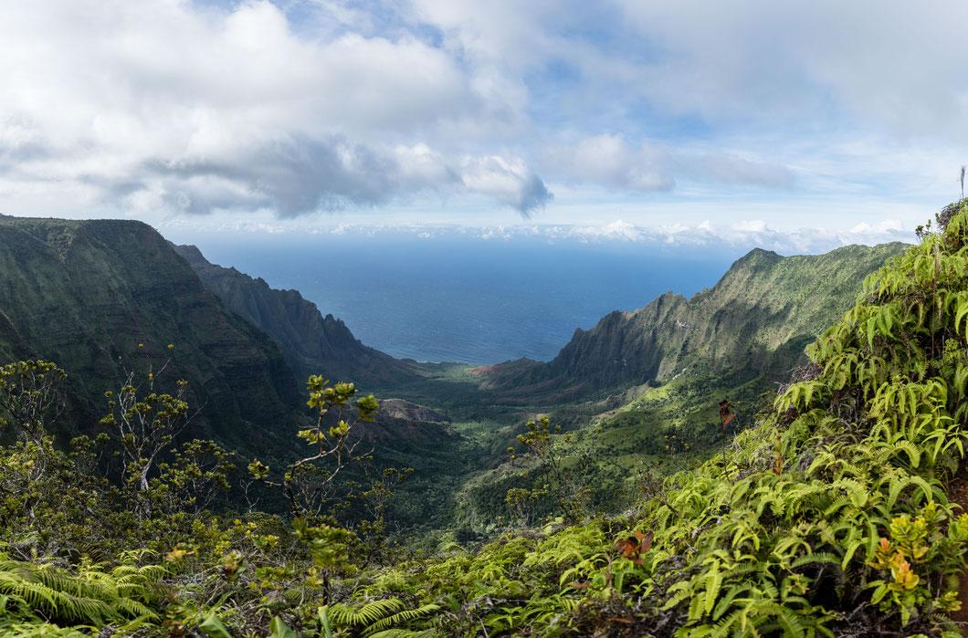 Na Pali Coast, Kaua'i, Hawai'i, USA