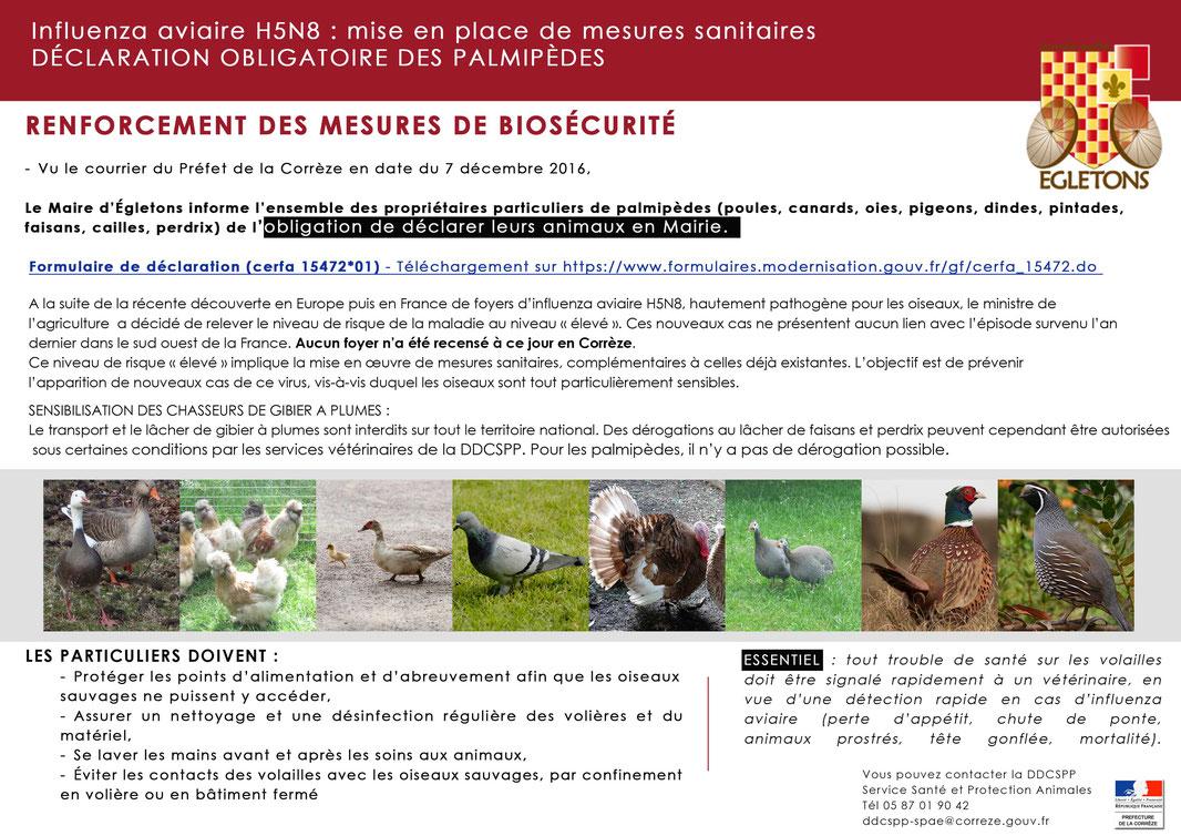 EGLETONS / RENFORCEMENT DES MESURES DE BIOSÉCURITÉ - Influenza aviaire H5N8 : mise en place de mesures sanitaires DÉCLARATION OBLIGATOIRE DES PALMIPÈDES
