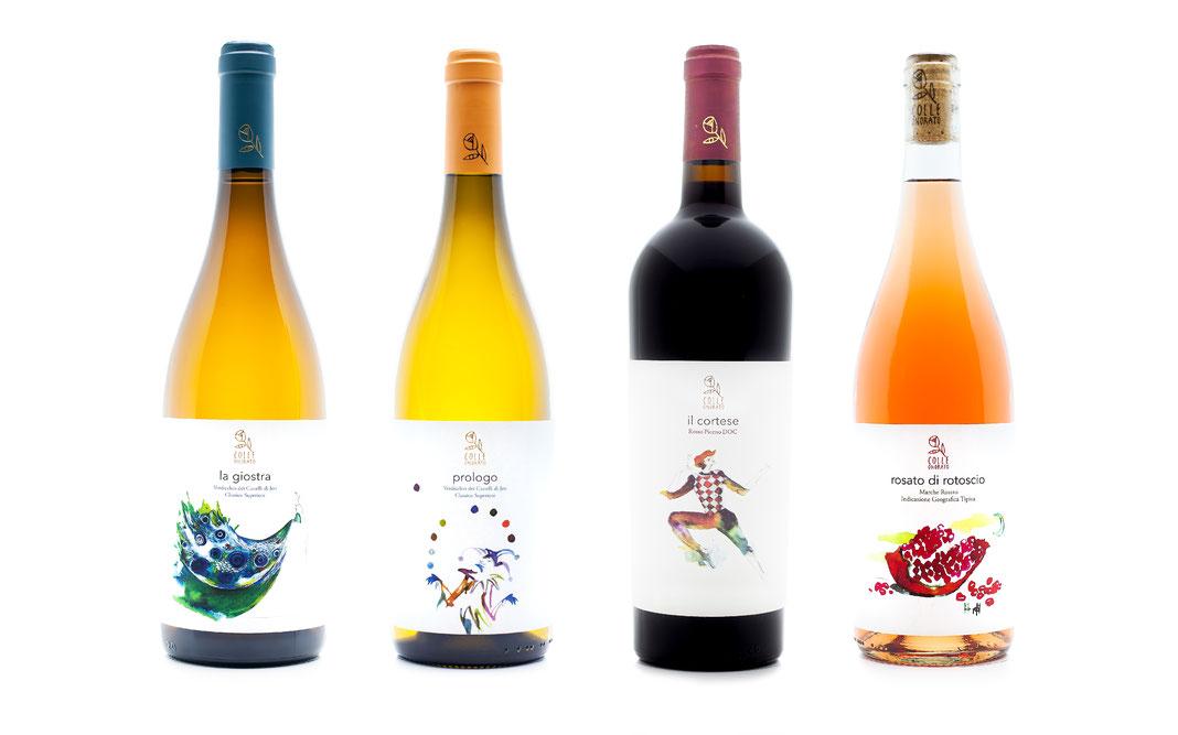 colleonorato vini, bottiglie verdicchio dei castelli di Jesi classico superiore DOC, rosso Piceno DOC, Bag in box, ancona, Jesi, marche, Italia, degustazioni.