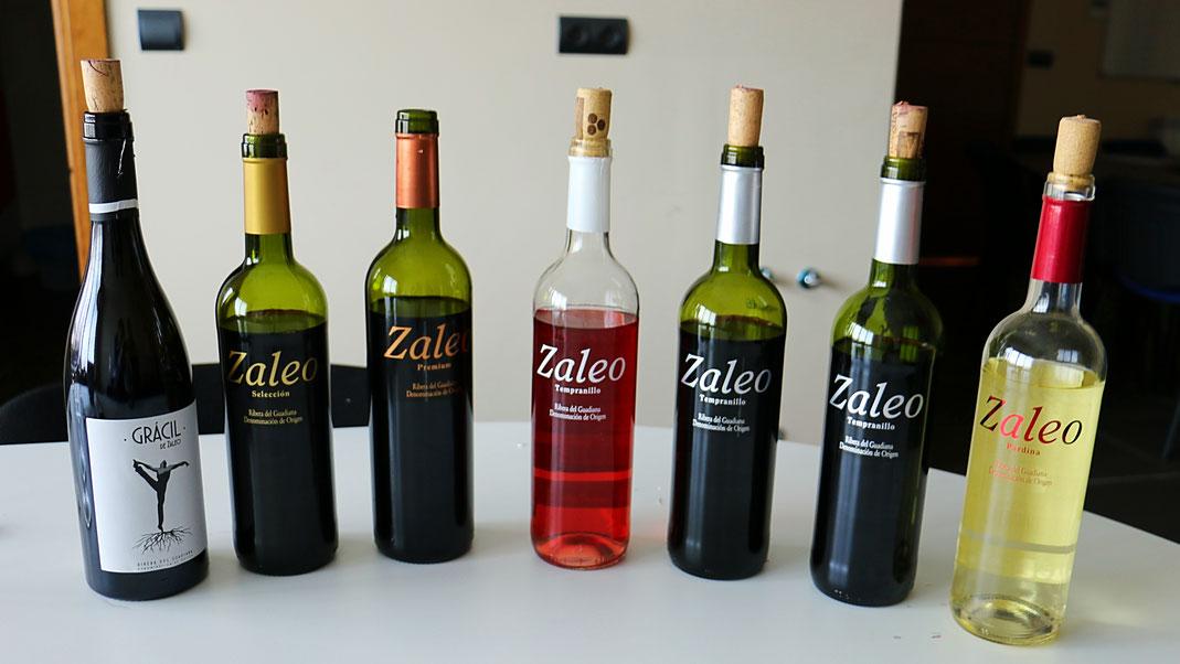 Zaleo Pardina Tempranillo Rosado Selección Premium Grácil Viñaoliva Almendralejo Ribera del Guadiana Wein