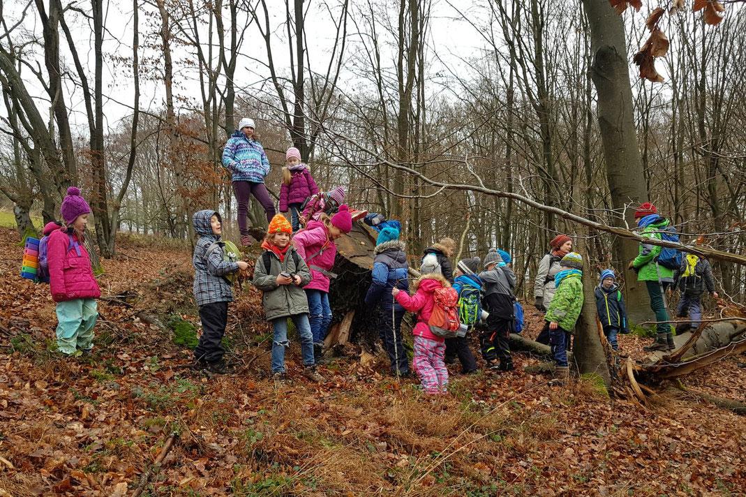 """Die """"Wilden Füchse"""" erforschen den Wald (Foto: M. Knippel)"""