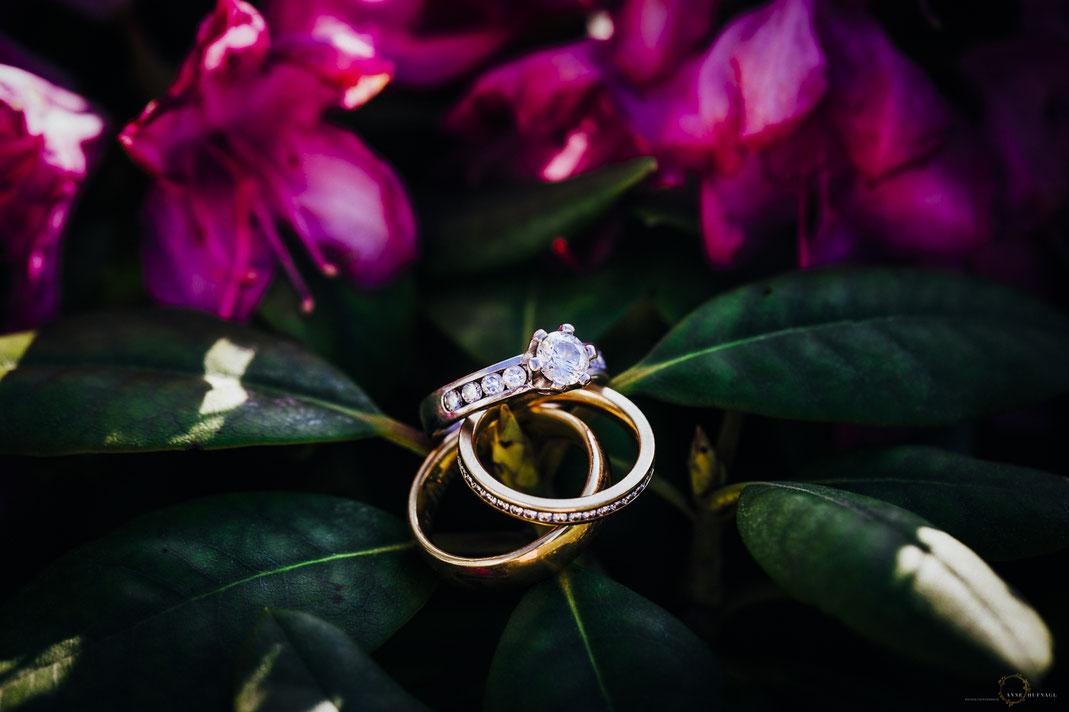 Tolles Ringfoto Hochzeit / Hochzeitsidee