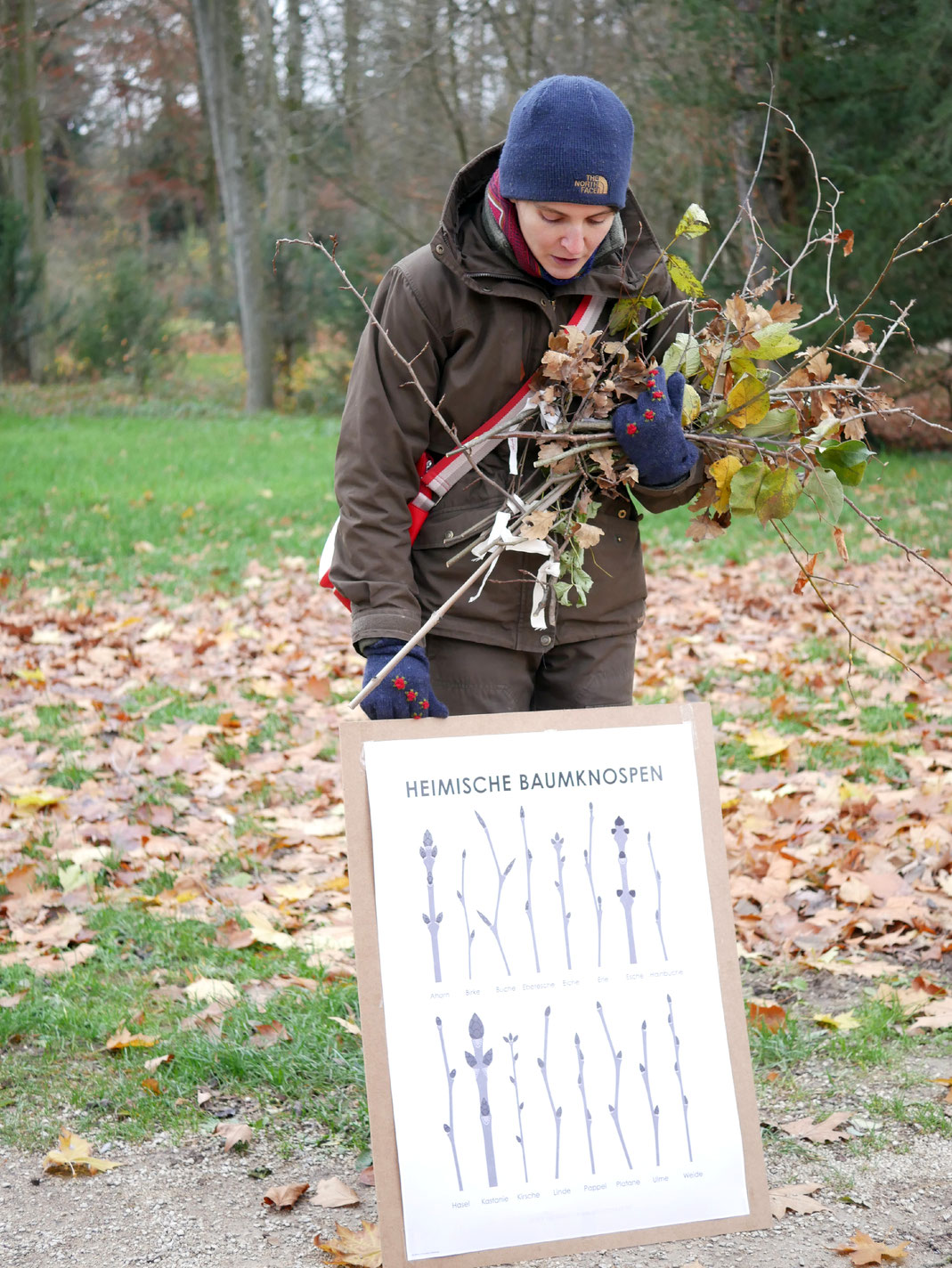 Judith Henkel zeigt, wie sich Bäume und Sträucher im Winter anhand der Knospen erkennen lassen (Foto: Sandra Nees)