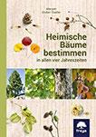 Heimische Bäume bestimmen in allen vier Jahreszeiten