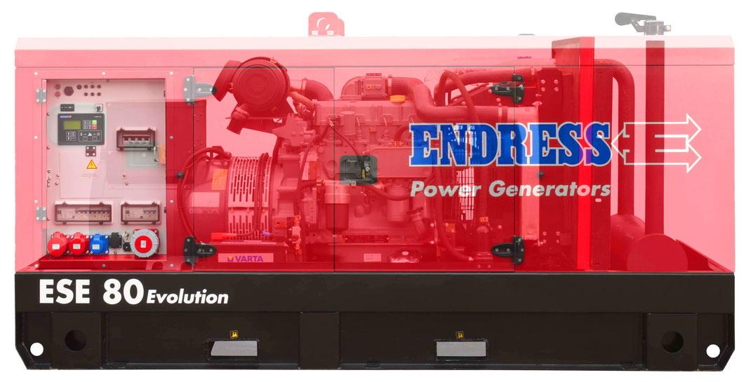 Generador Endress ESE 80