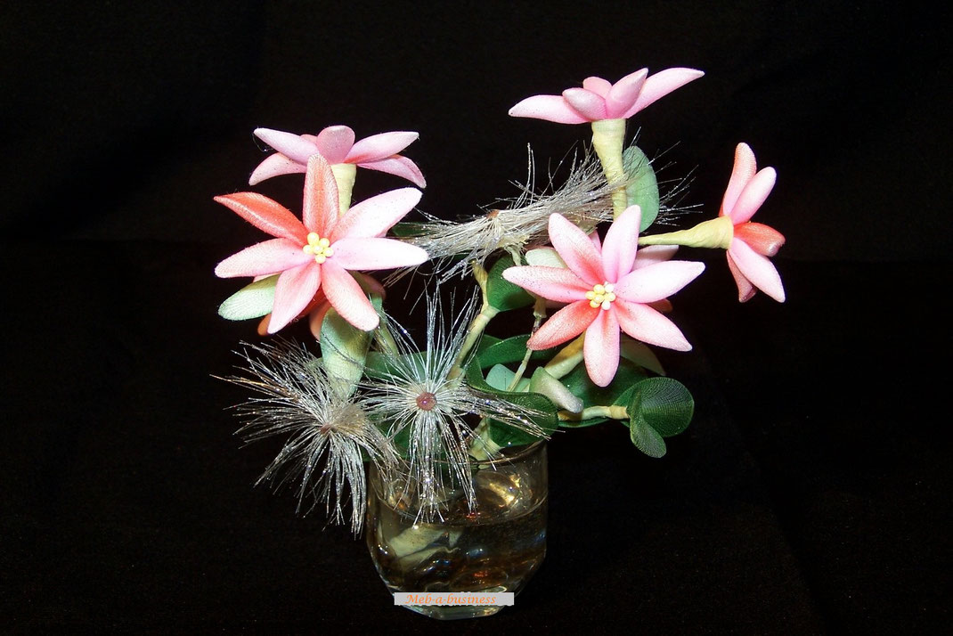 Edelweiss,Allium