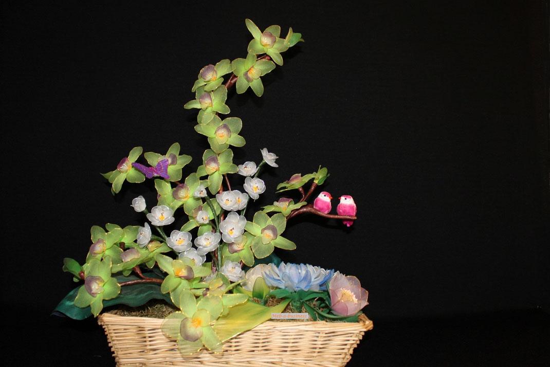 Orchidée,Lotus,Fleur de pommier