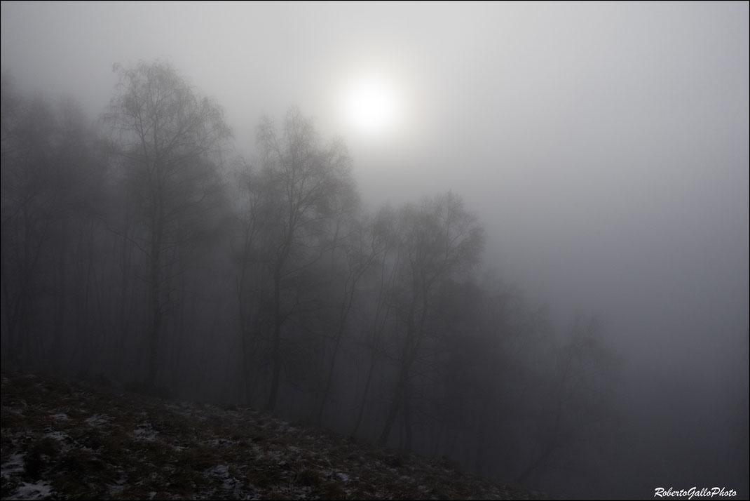 La nebbia che avvolge