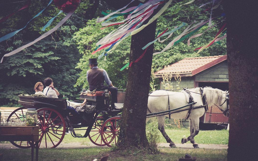 Freie Trauung, Freier Redner, Freier Redner, Freie Hochzeit, Hochzeitsredner, Heiraten in Bayern, Heiraten in Sachsen, Heiraten in Berlin, Heiraten in Hamburg, Heiraten in Hessen, Heiraten in Niedersachsen, Heiraten in Thüringen, Heiraten im Ausland
