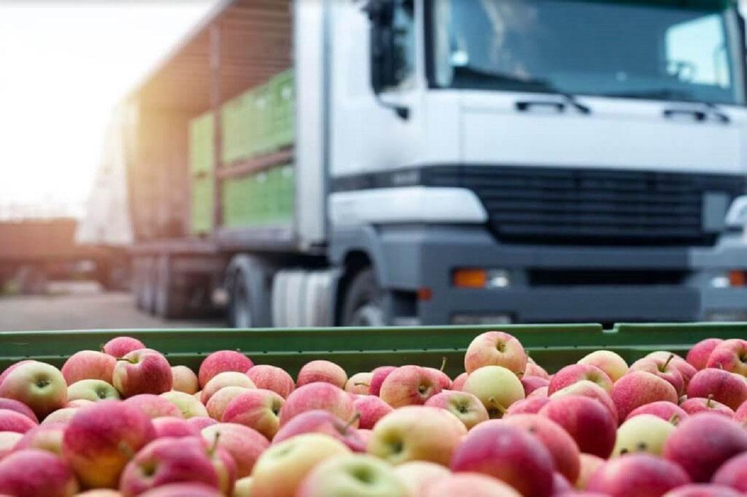 Normas para el transporte terrestre de Alimentos en Mexico