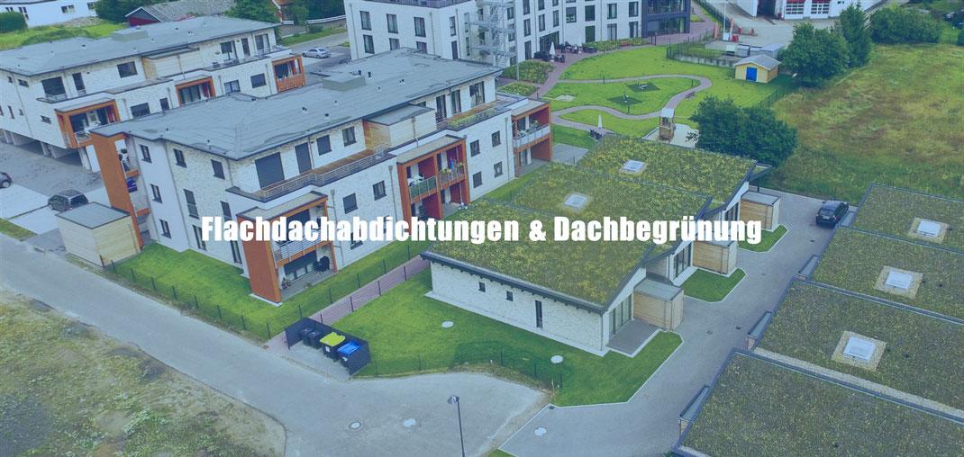 Flachdachabdichtungen und Dachbegrünung