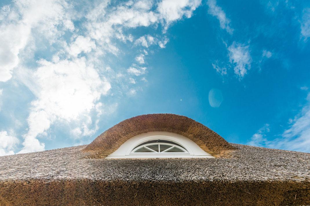 Gaube eines Reetdach Ferienhaus in Wustrow Fischland Darss Ostsee