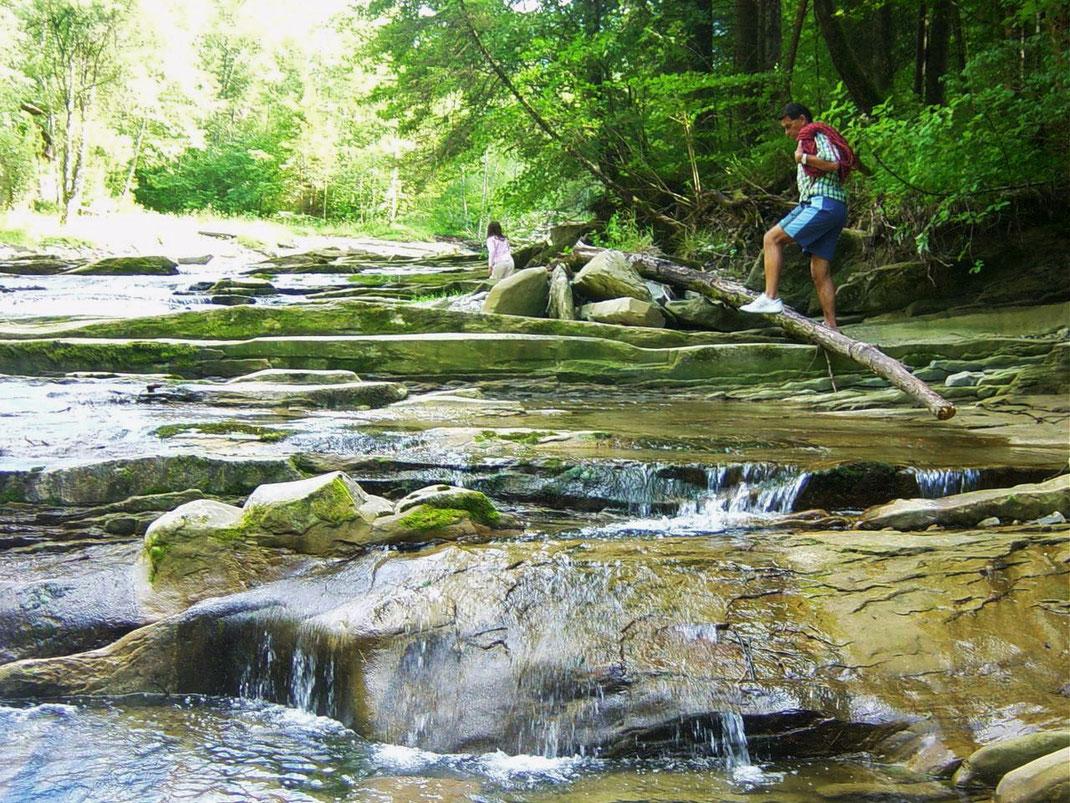 Wildfluss Ammer Foto: U. Dopheide