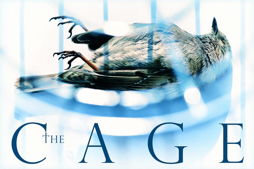 The Cage © Ralf Schütt Photography