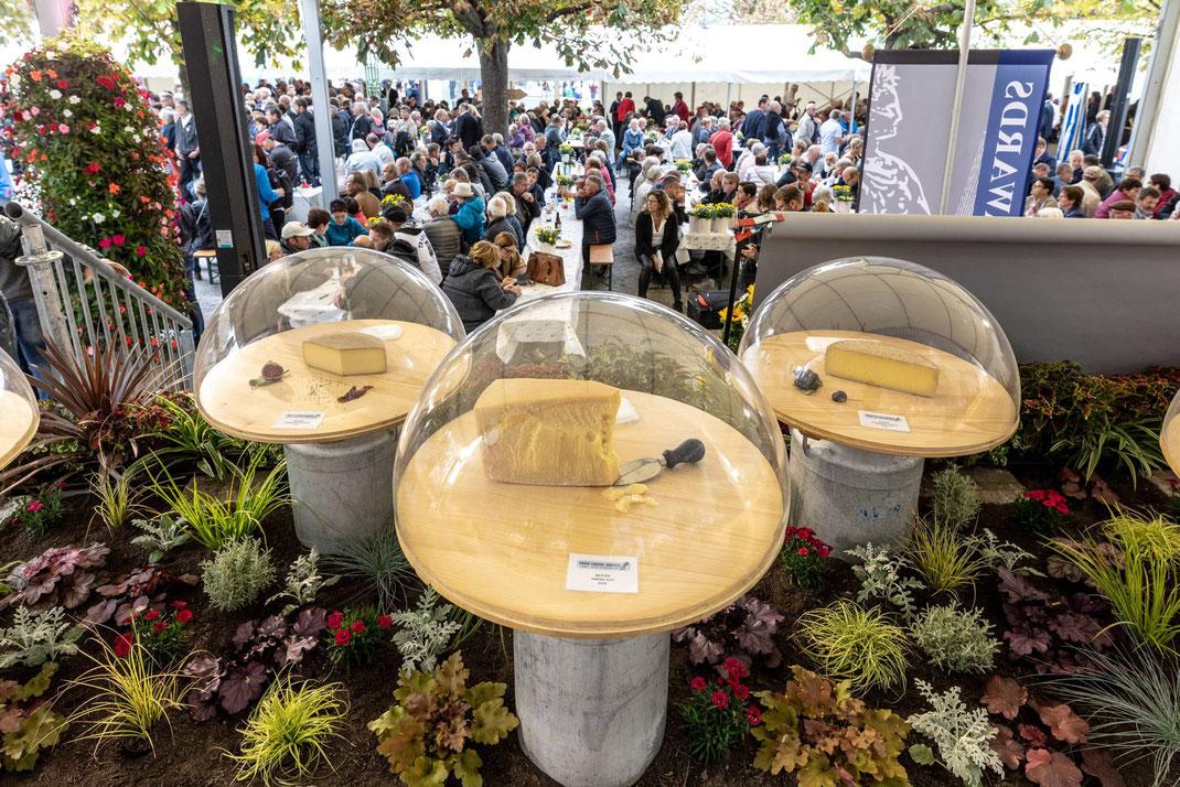 Unter der Käseglocke: Preisverleihung SwissCheeseAwards 2018 am Schweizerhofquai in Luzern (Swiss Cheese Festival 2018 mit Käsemarkt).