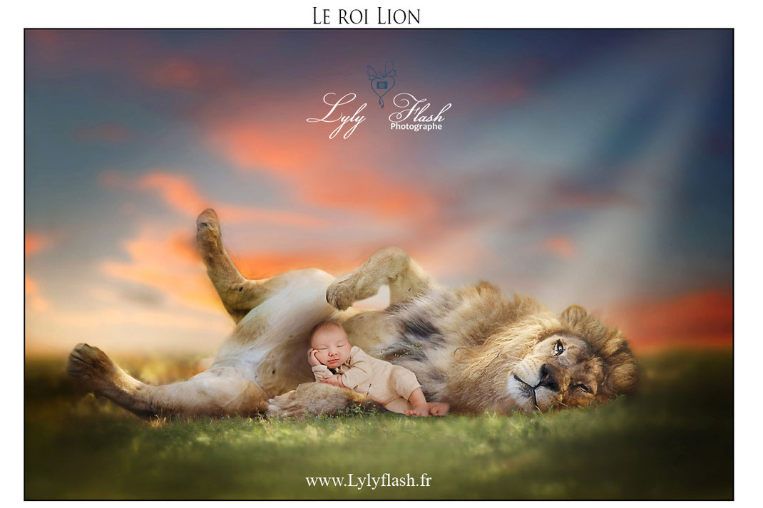 photo originale photographe france bébé var photo lion paca photographe de talent
