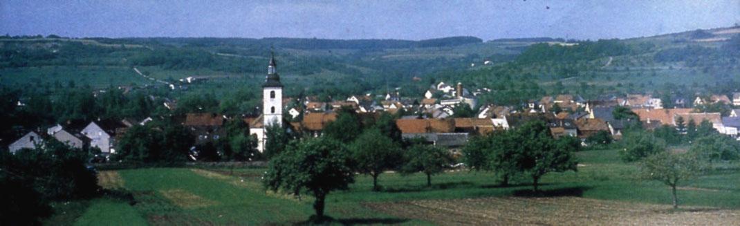 Panoramablick mit alter (Vordergrund, weißer Turm) und neuer (Hintergrund, rot-bräunlicher Turm) Pfarrkirche