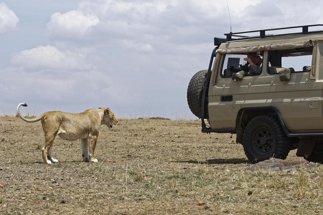 Abenteuer pur bei meinen Wildlife Fotoworkshops in Kenia
