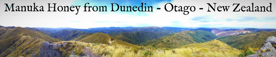 Manuka Honey from Dunedin - Otago - New Zealand
