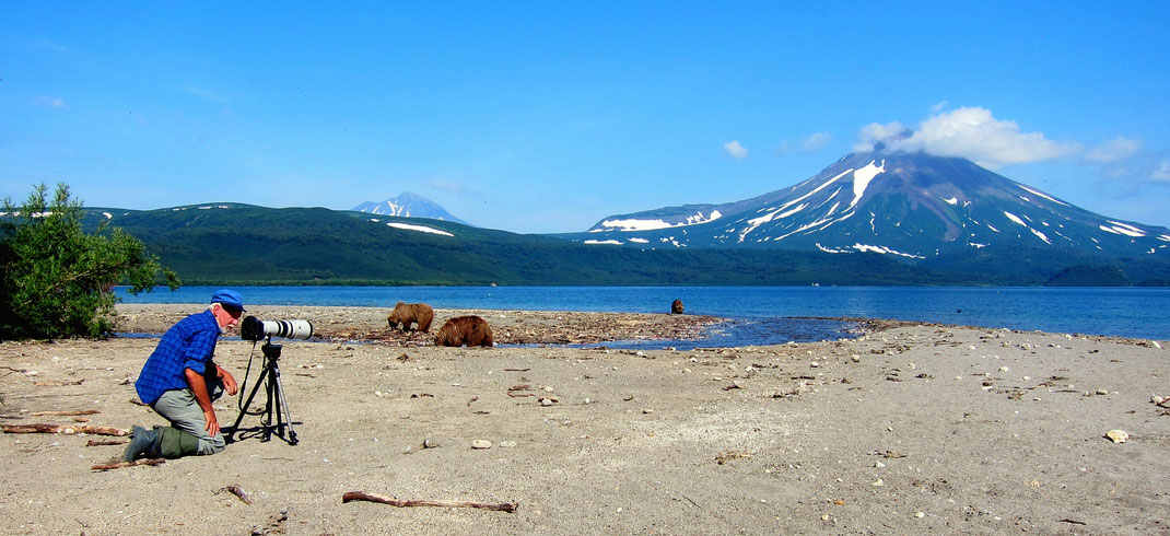 Die weltweit grössten Braunbären in Kamtschatka am Kurilen-See.