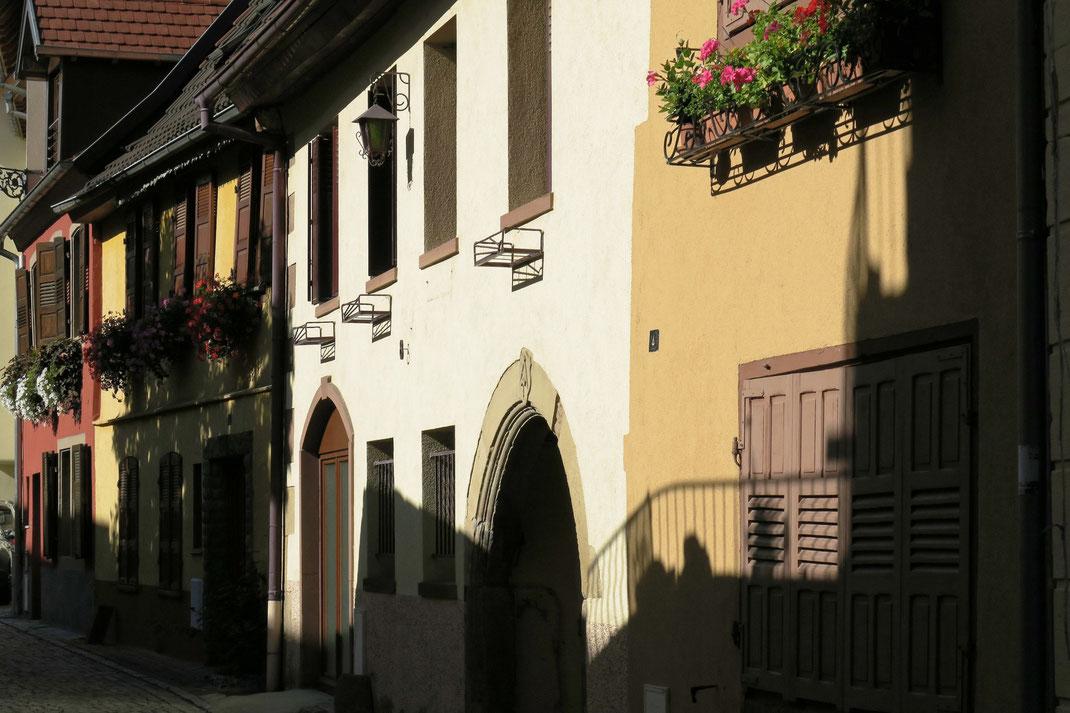 Elsass - Molsheim
