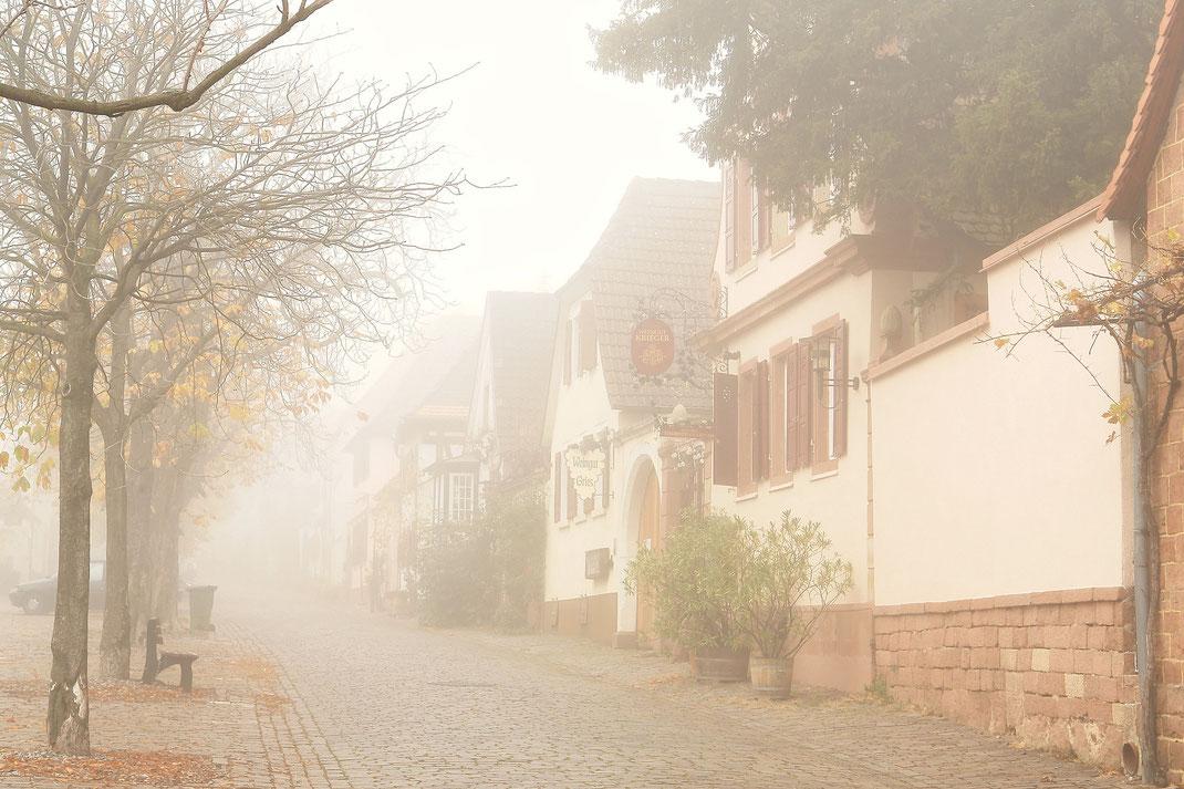 Theresienstraße im Nebel