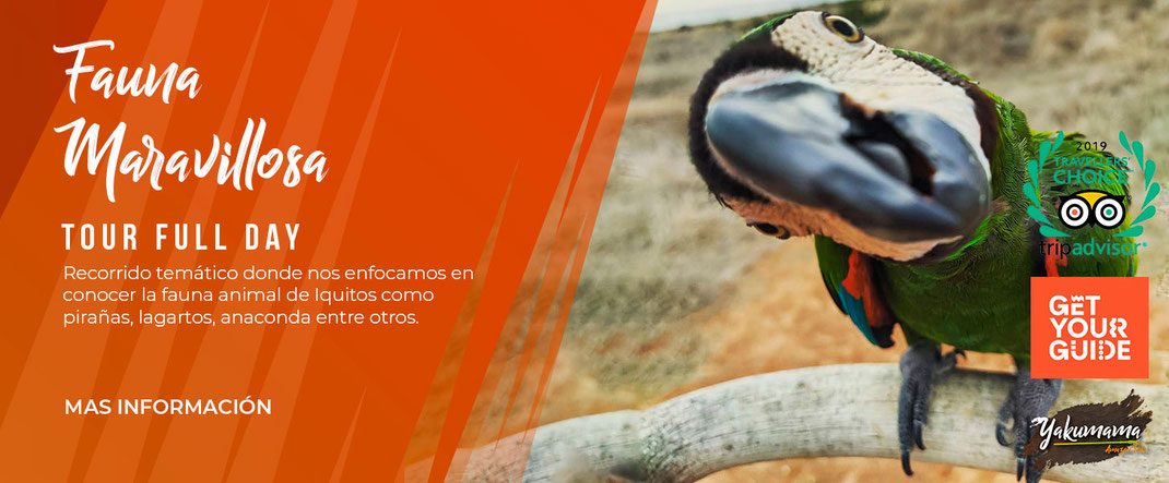 tour iquitos animales full day