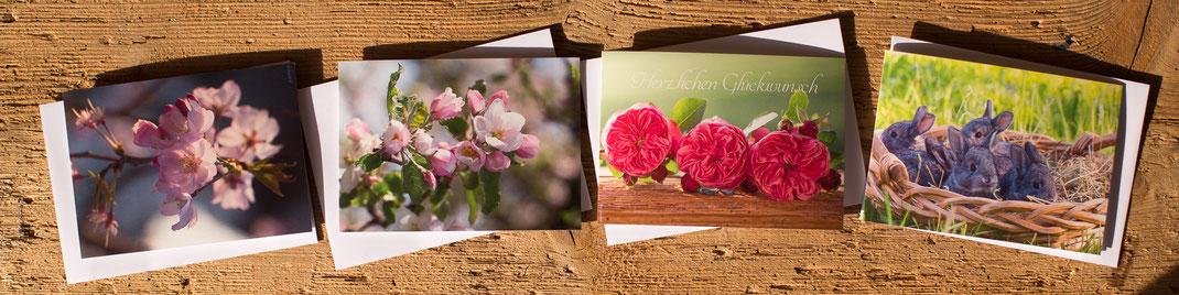 Fotokarten, Glückwunschkarten, Geburtstagskarten, kleine Geburtstagskarten, kleine Karten