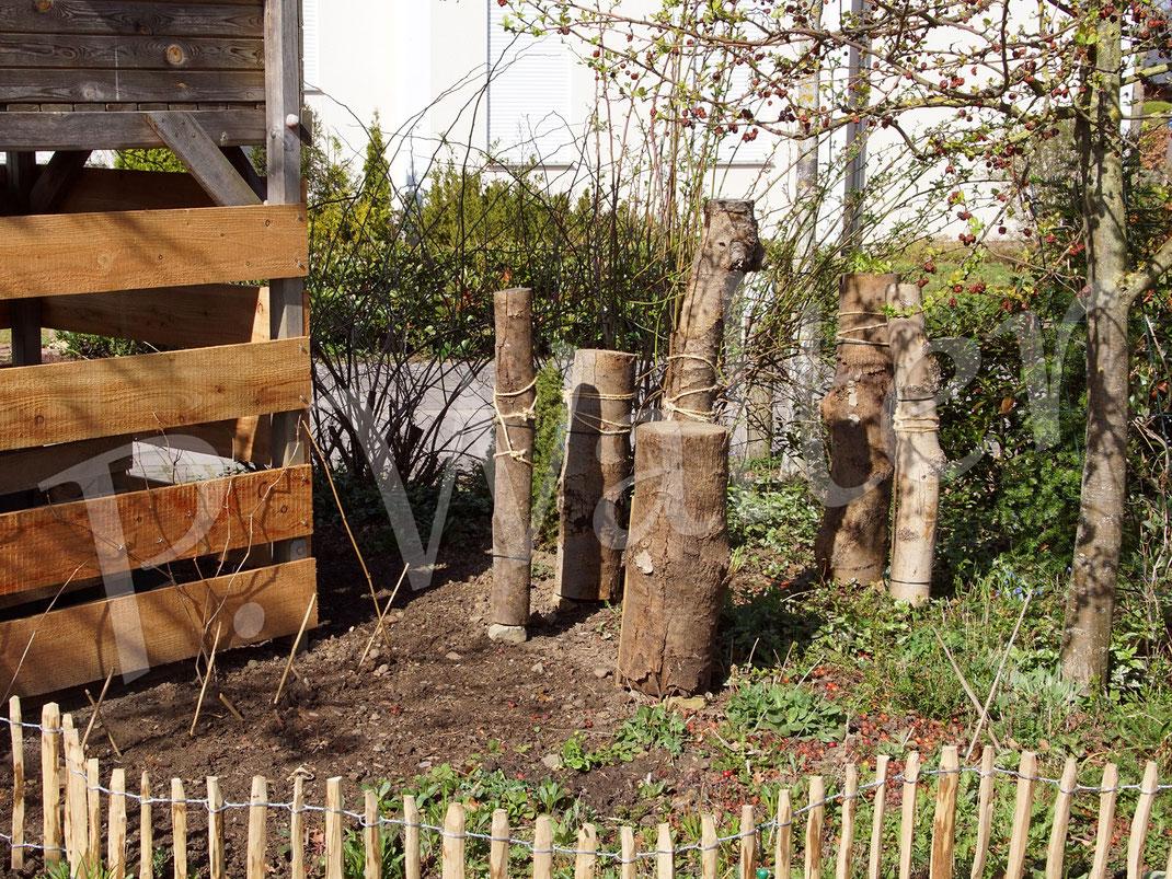 03.04.2021 : die kürzlich aufgestellten Baumstämme (schon mehrere Jahre abgelagert) - eine Einladung für die Holzbiene ...